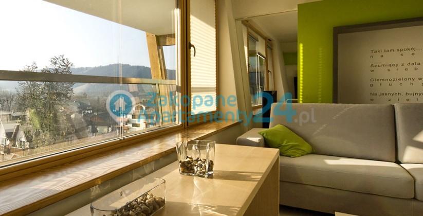 widok z okna salonu w apartamencie aquapark 4 w Zakopanem
