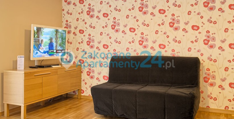 apartament w zakopanem centrum salon