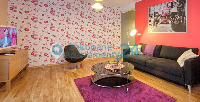 apartament zakopane centrum 4 salon z tv