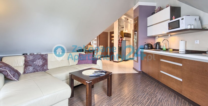 apartament w Zakopanem - centrum 1 - aneks kuchenny
