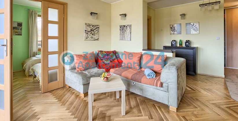 salon i sofa w apartamencie w Zakopanem