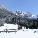 trasy-narciarskie-w-zakopnem