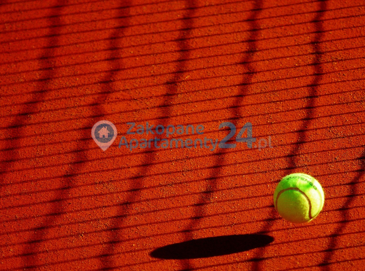 tenis piłeczka i kort