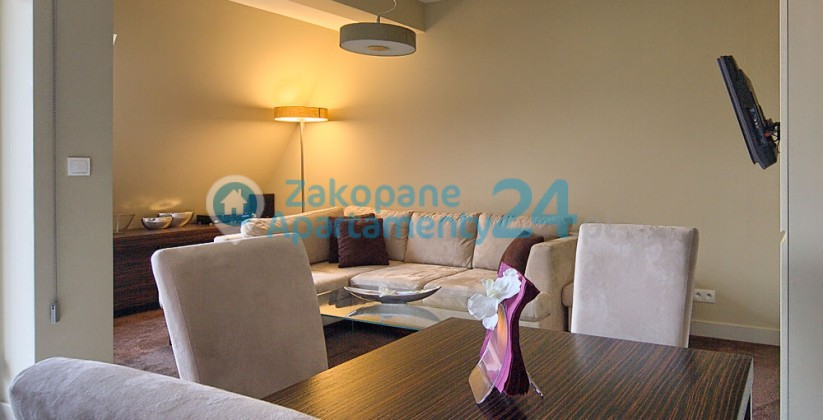 wygodny salon w apartamencie Szymoszkowa 1