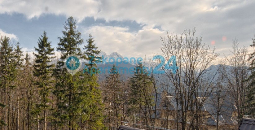 Widok z okien Apartamentu Tetmajera 1